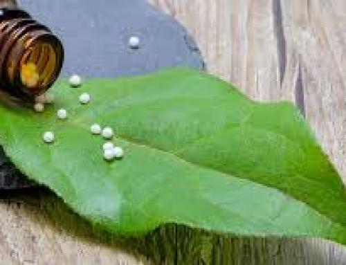 Plante benefice pentru afecțiunile tiroidei